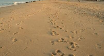 Make memories at the Jersey Shore